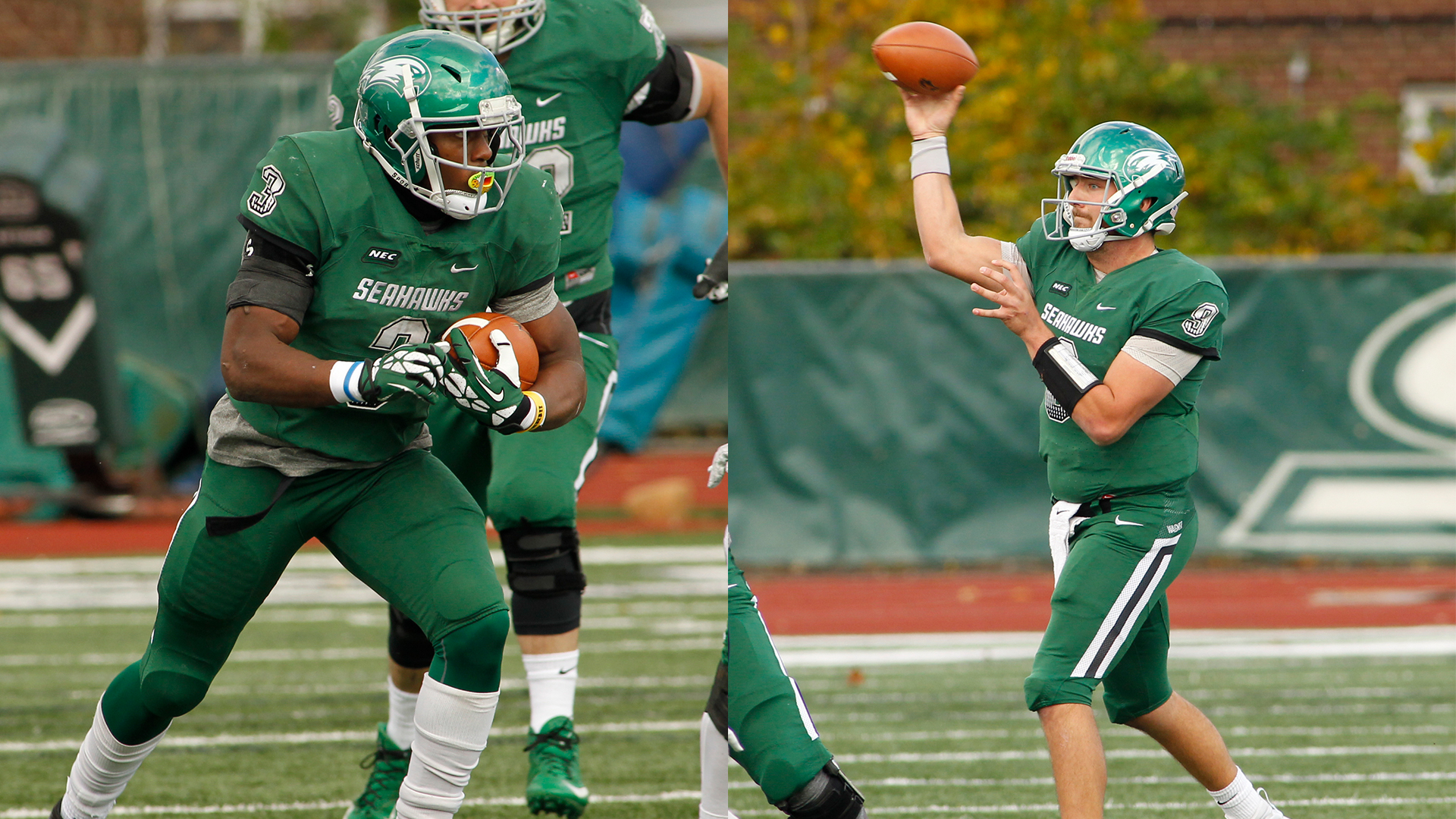 Former Wagner Standouts Ryan Fulse And T J  Linta Receive NFL